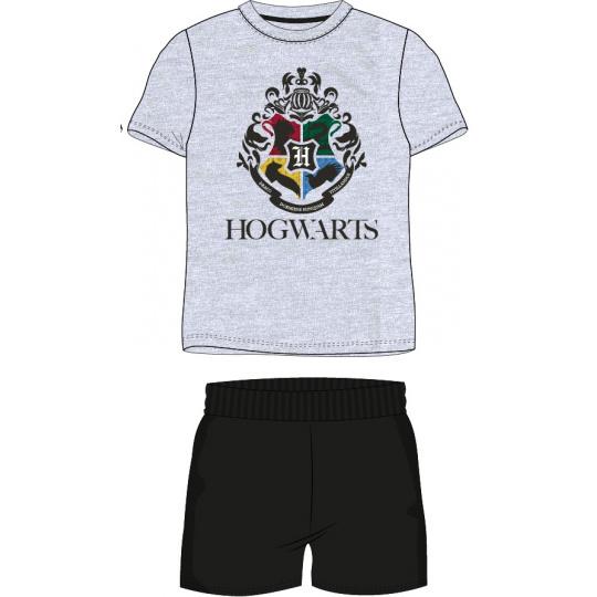 Pánské pyžamo Harry Potter šedé S-XXL
